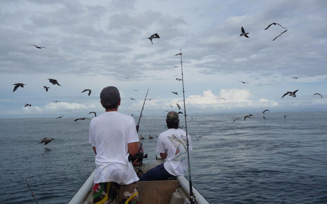 La Pesca en Nuquí I